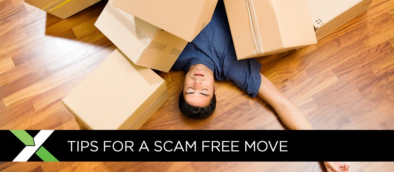 BlogImage_06ScamFreeMove1